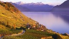 Lavaux, a UNESCO World Heritage Site; terraced vinyards stretching along the shores of Lake Geneva from Lausanne to Montreux