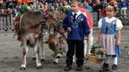 OLMA - St. Gallen's popular Fair for Agriculture
