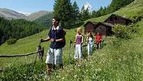 Nordic Walking in the Zermatt Region