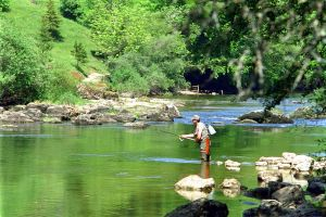 Fishing in the River Doubs where the best river trouts are to be found...