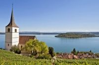Ligerz with its vineyards on the shores of Lake Biel and view of the St. Peter's Island